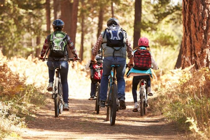 Family bike offer